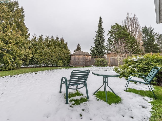1742 Howroyd Ave - SE Mt Tolmie Single Family Detached for sale, 5 Bedrooms (388151) #19