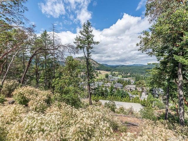 106 1177 Deerview Pl - La Bear Mountain Single Family Detached for sale, 4 Bedrooms (412778) #40