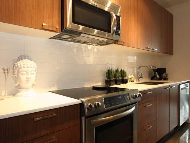 406 - 221 Union Street, Vancouver, BC - Mount Pleasant VE Apartment/Condo for sale, 1 Bedroom (V880272) #5