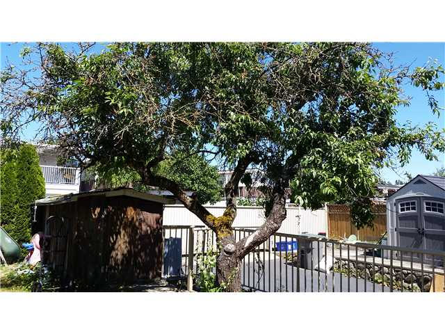 3455 E 50TH AV - Killarney VE House/Single Family for sale, 6 Bedrooms (V1074711) #16