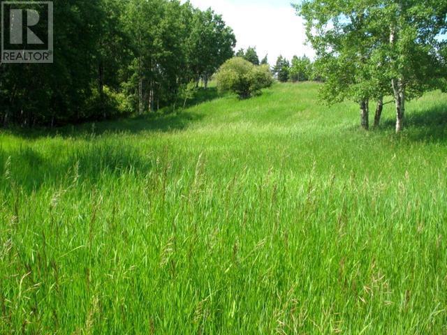 1540 COURTENAY BROWN ROAD - Rock Creek Bridesville for sale, 3 Bedrooms (180893) #68