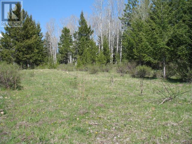 1540 COURTENAY BROWN ROAD - Rock Creek Bridesville for sale, 3 Bedrooms (180893) #76