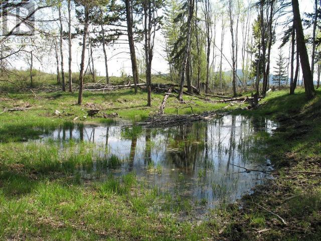 1540 COURTENAY BROWN ROAD - Rock Creek Bridesville for sale, 3 Bedrooms (180893) #86