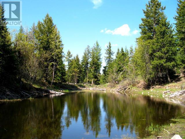 1540 COURTENAY BROWN ROAD - Rock Creek Bridesville for sale, 3 Bedrooms (180893) #9