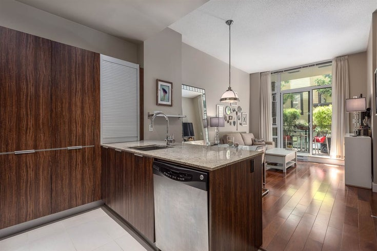 102 1088 RICHARDS STREET - Yaletown Apartment/Condo for sale, 1 Bedroom (R2304840)