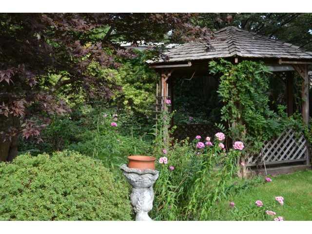 534 ELLIS ST - Windsor Park NV House/Single Family for sale, 4 Bedrooms (V926136) #6