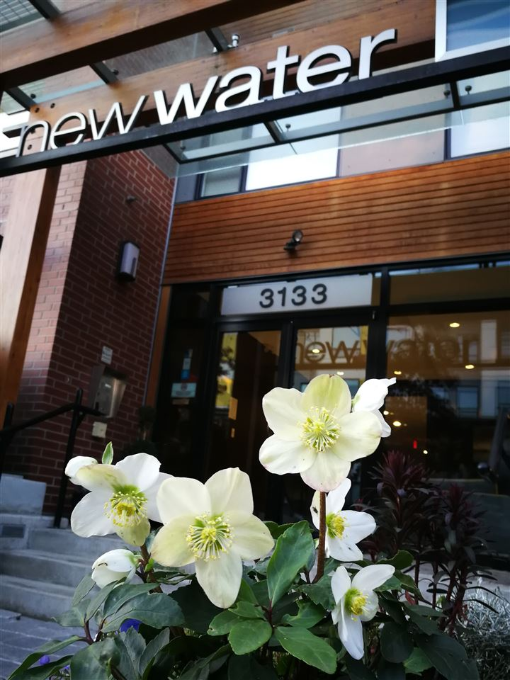 307 3133 RIVERWALK AVENUE - Champlain Heights Apartment/Condo for sale, 2 Bedrooms (R2331637)