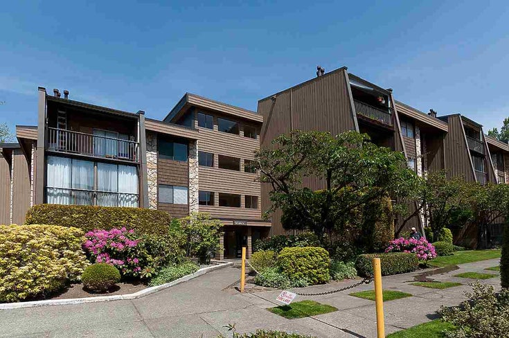 119 9101 HORNE STREET - Government Road Apartment/Condo for sale, 1 Bedroom (R2494799)