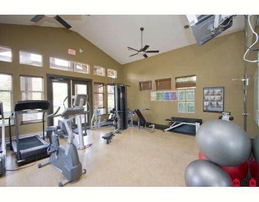 # 148 15168 36TH AV - Morgan Creek Townhouse for sale, 3 Bedrooms (F2833862) #2