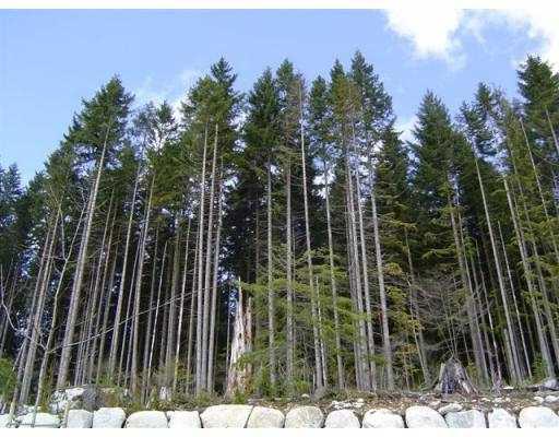 125 FERNWAY DR - Heritage Woods PM 1/2 Duplex for sale, 3 Bedrooms (V584735) #5