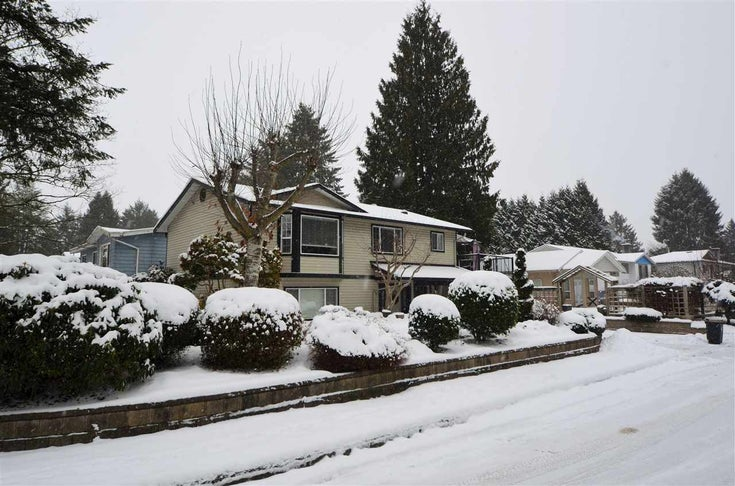 21095 116 AVENUE - Southwest Maple Ridge House/Single Family for sale, 4 Bedrooms (R2428524)