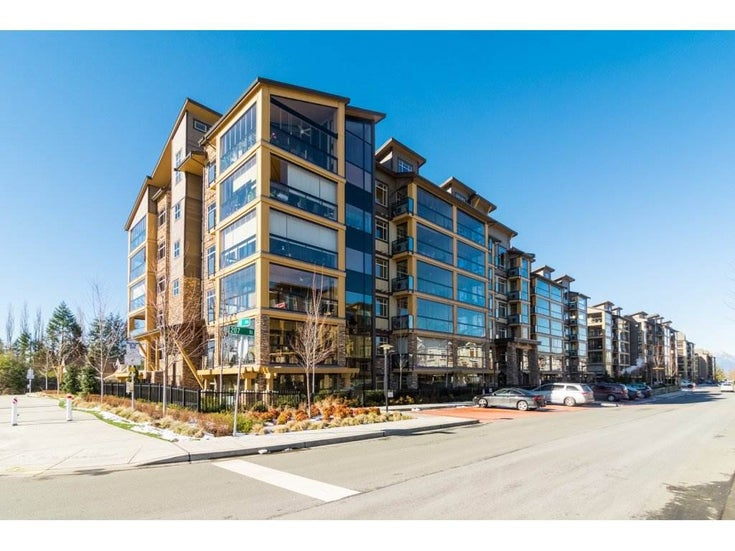 334 8067 207 STREET - Willoughby Heights Apartment/Condo for sale, 2 Bedrooms (R2318814)