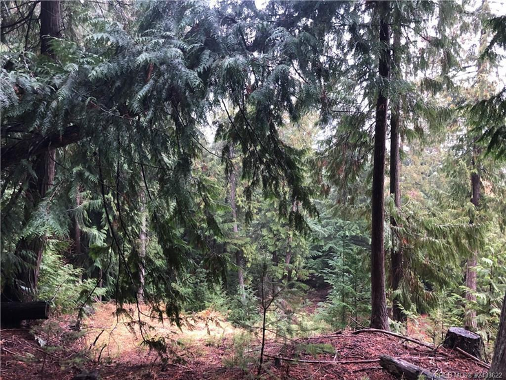 17 CHASE ROAD - Christina Lake Vacant Land for sale(2433622)