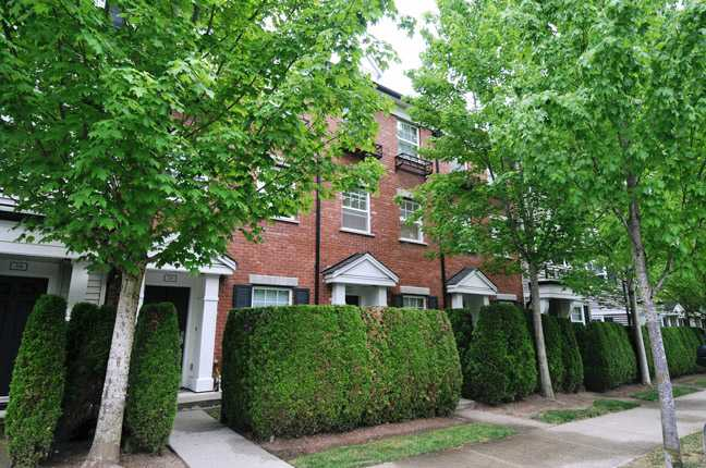 # 28 11067 BARNSTON VIEW RD - South Meadows Townhouse for sale, 2 Bedrooms (V1124181)