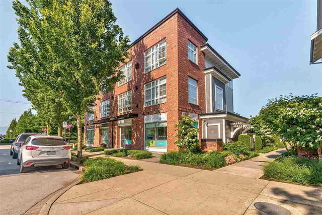 11 10996 BARNSTON VIEW ROAD - South Meadows Apartment/Condo for sale(R2376732)
