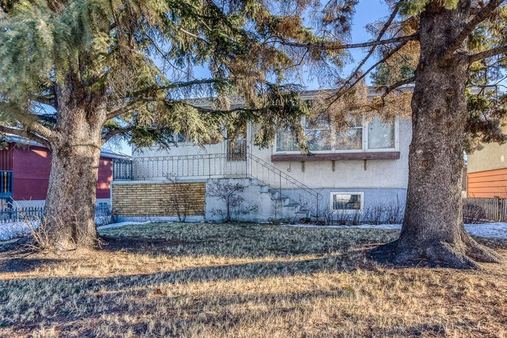 1830 41 Street SE - Forest Lawn Detached for sale, 3 Bedrooms (A1061305)