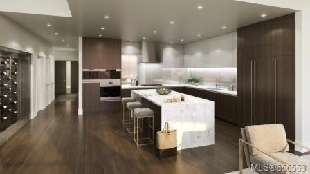 314 888 Government St - Vi Downtown Condo Apartment for sale(866563)