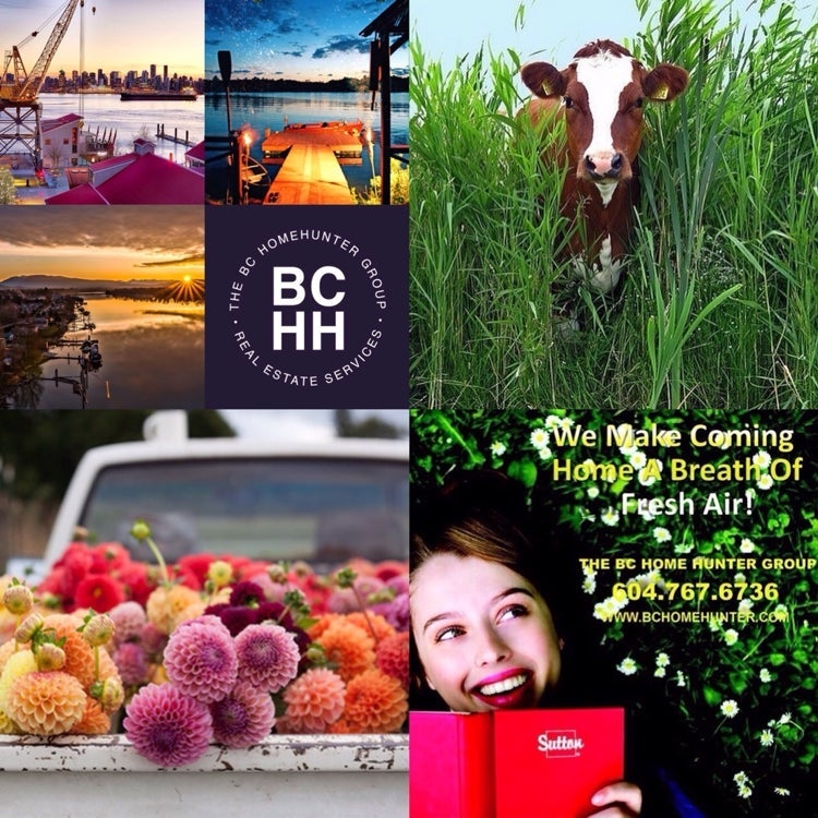 THE BC HOME HUNTER GROUP l AWARD WINNING URBAN & SUBURBAN METRO VANCOUVER l FRASER VALLEY l WEST COAST l BC REAL ESTATE 604-767-6736 #BCHOMEHUNTER.COM  #Vancouver #WhiteRock #SouthSurrey #WestVancouver #Langley #MapleRidge #NorthVancouver #Langley #FraserValley #Burnaby #FortLangley #PittMeadows #Delta #Richmond #CoalHarbour #Surrey #Abbotsford #FraserValley #Kerrisdale #Cloverdale #Coquitlam #EastVan #Richmond #PortMoody #Yaletown #CrescentBeach #Clayton #Chilliwack #MorganCreek #FraserValleyHomeHunter #VancouverHomeHunter #OceanPark #MorganHeights #GrandviewHeights #LynnValley #Lonsdale #VancouverHomeHunter #FraserValleyHomeHunter #BCHHRealty.com  @BCHOMEHUNTER  THE BC HOME HUNTER GROUP  AWARD WINNING URBAN & SUBURBAN REAL ESTATE TEAM WITH HEART 604-767-6736  METRO VANCOUVER I FRASER VALLEY I BC  What's in your beautiful B.C. backyard ?  Look for our trademarked
