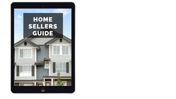 Download Dave Masson's Home Sellers Guide