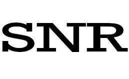SNR Salvage & Recovery