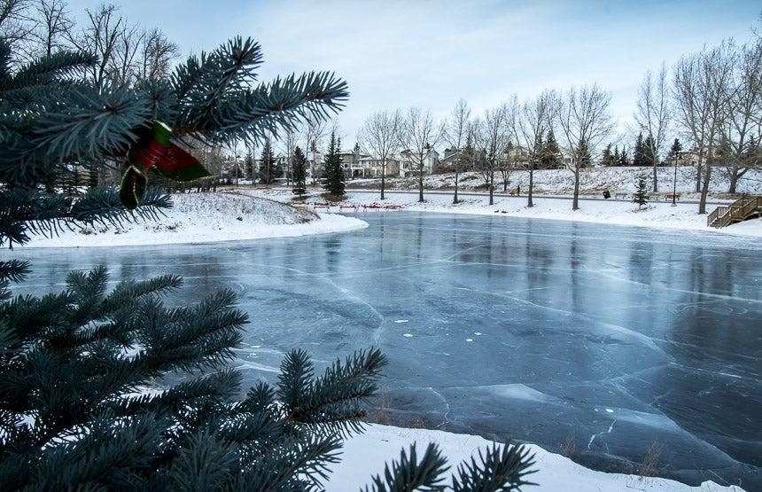 Carbon Park Calgary