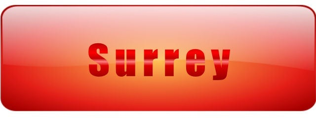 Surrey one percent realty