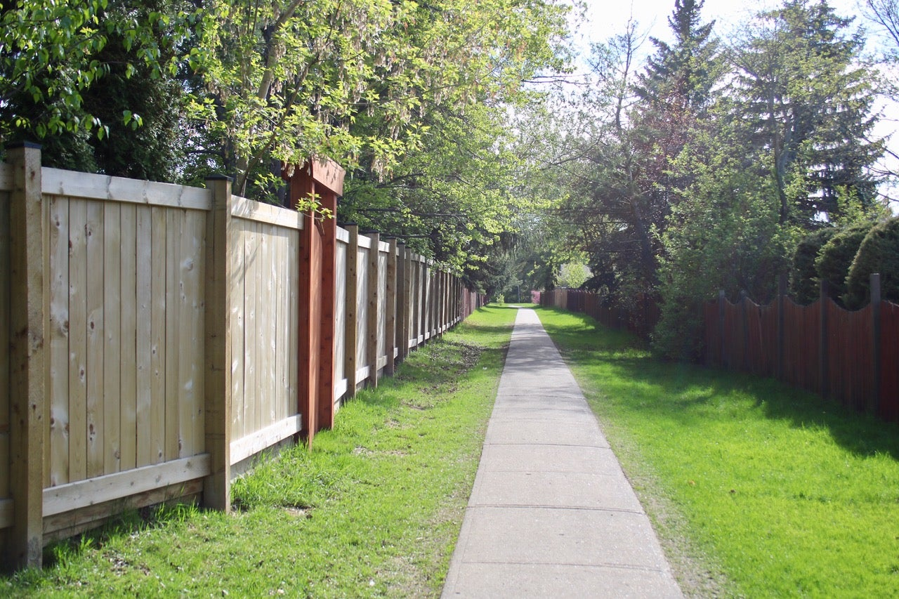 Lacombe Park trails