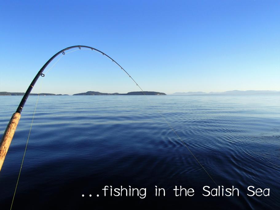 You should be fishing...