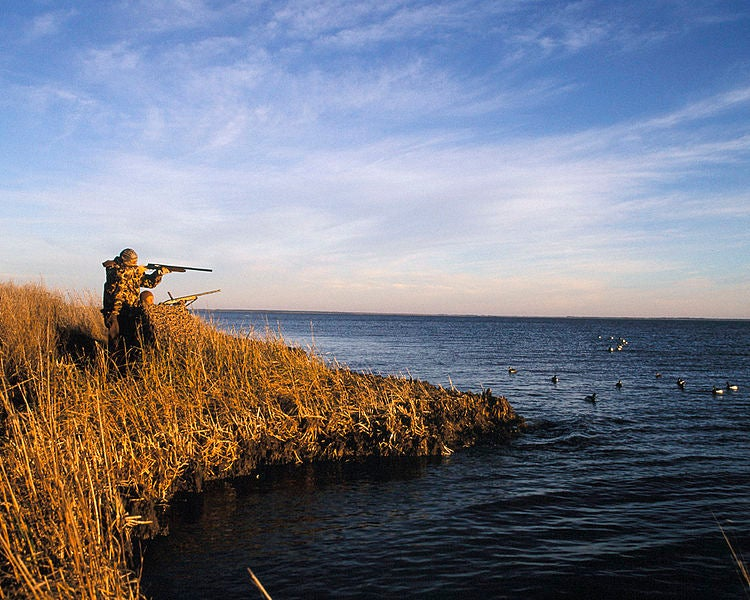 Hunters in Chatham-Kent