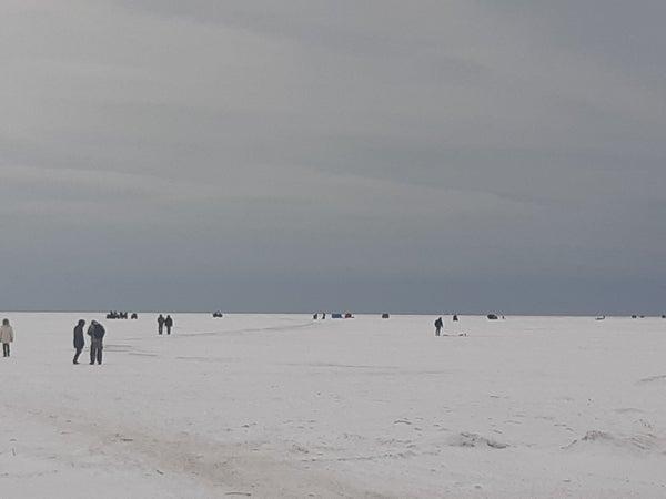Fishing Huts and Activity at Mithell's Bay