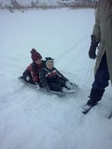 Children sliegh riding in snow