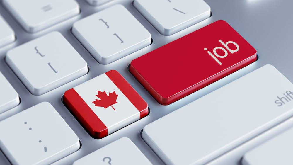 Canadian Employment Numbers Feb 2020