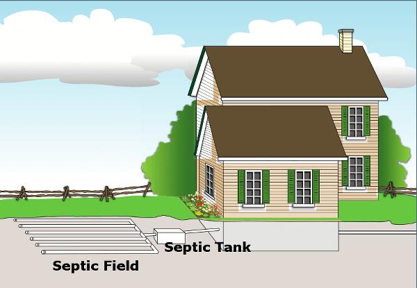 sketch of septic system in Muskoka
